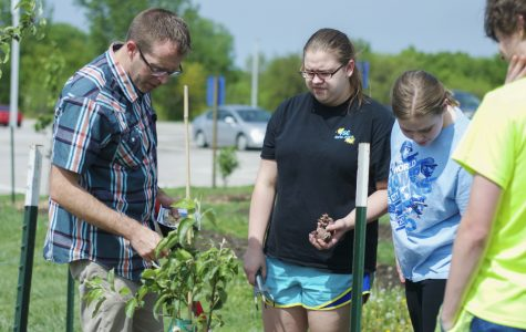 Green Team plants orchard to provide food for others