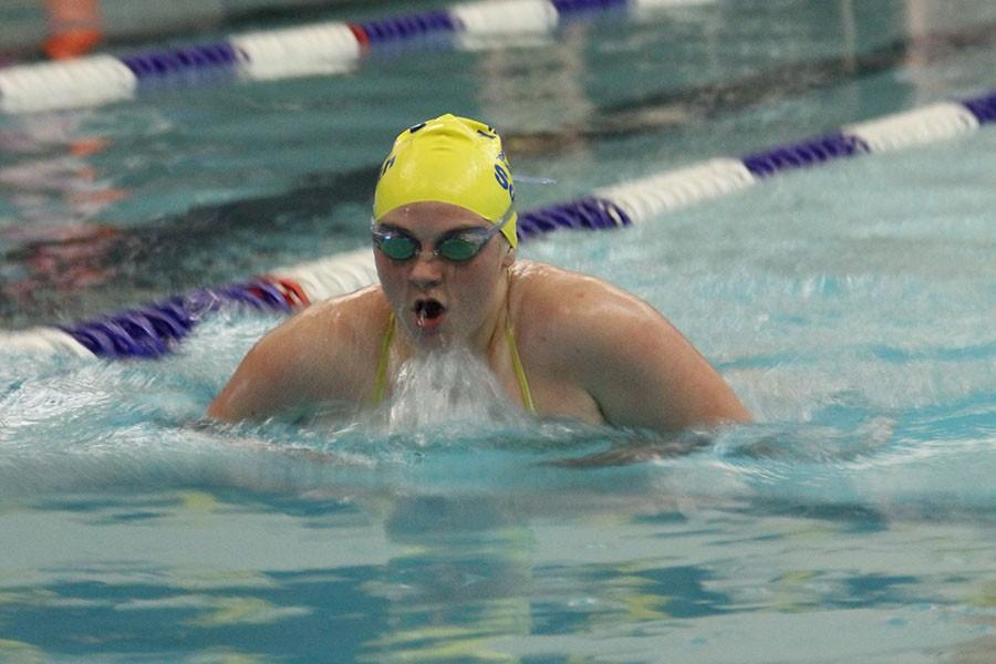 Lindsey Williams, senior, competing in the breast stroke event at a recent meet.