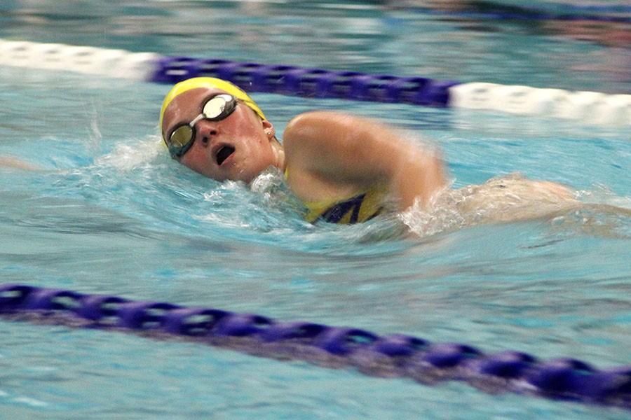 Megan Barb, senior, swimming the freestyle.