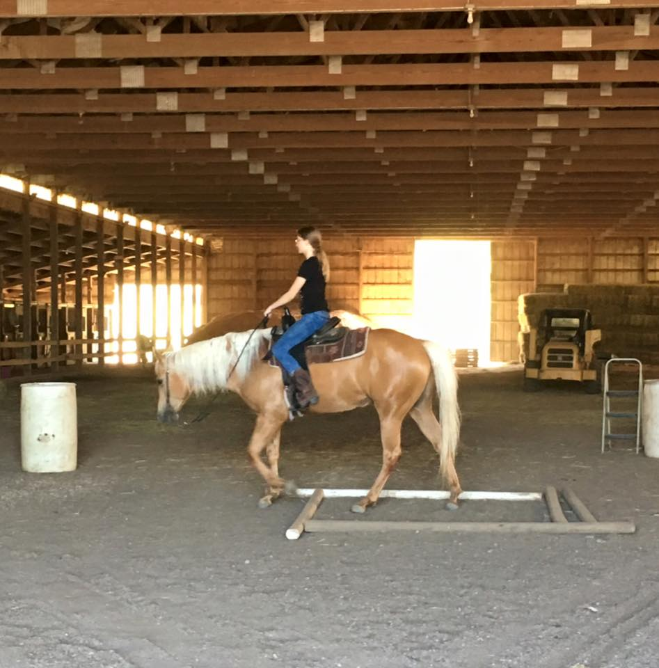 Secor races with barrels and horses