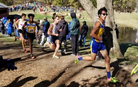 Cross country achieves goals at state