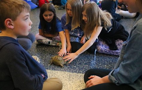 Students present animals to kids
