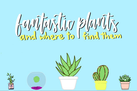 Fantastic Plants and Where to Find Them